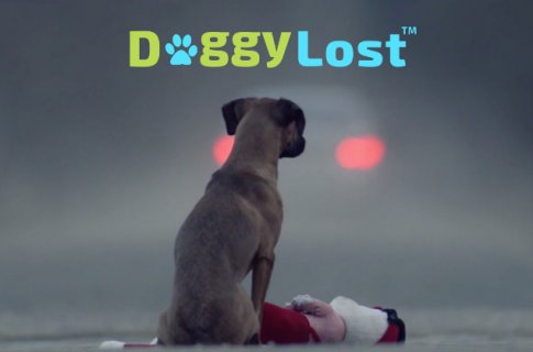 Doggy Lost