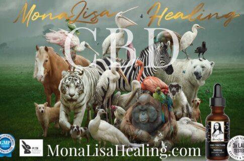 MonaLisaHealing.com